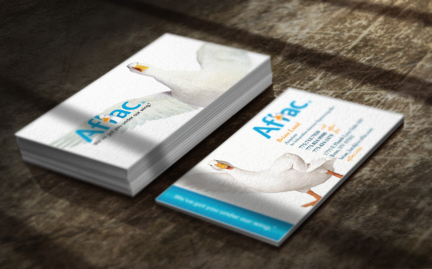 Brandon jared graphic web design reno nv aflac business card reheart Image collections